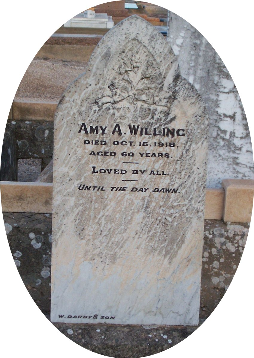 amy willing