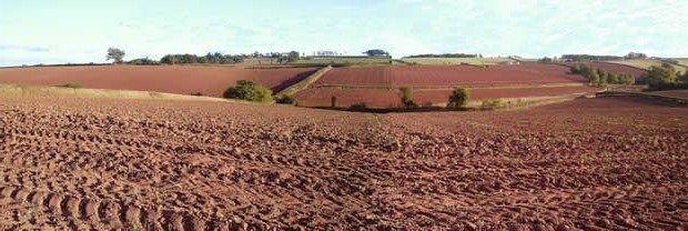 Devonshire red clay landscape
